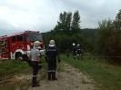 Traktorunfall am 6.8.14_4