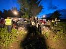 Verkehrsunfall am 18. Juni_2